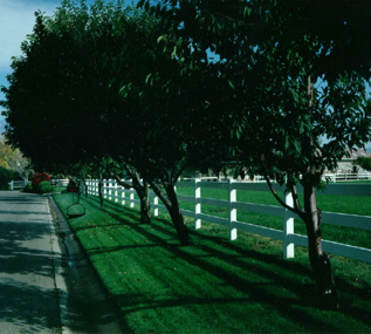 American Fence - Lincoln - Vinyl Fencing, 3 Ranch Rail (953)