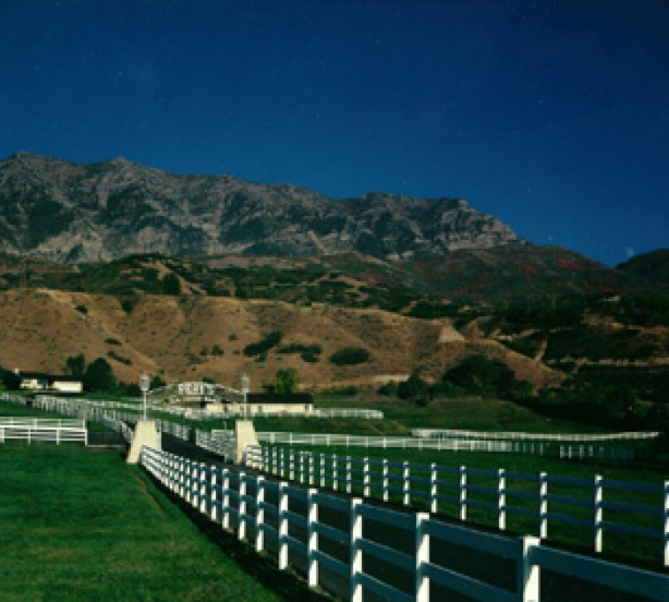 American Fence - Lincoln - Vinyl Fencing, 3 Ranch Rail (954)