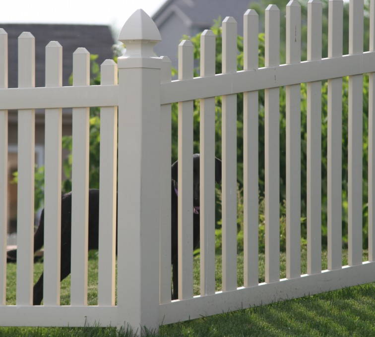 American Fence - Lincoln - Vinyl Fencing, 4' overscallop picket 550