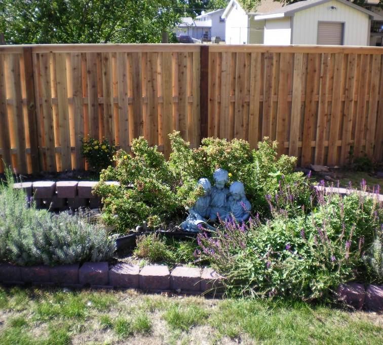 American Fence - Lincoln - Wood Fencing, Wood Board on Board with Capboard